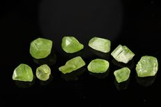 Lot of Peridote (olivine) gemmy deep green crystals - 17,38gm (10)