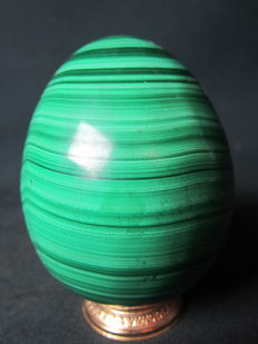Large, highly polished, fine Malachite Egg - 10.2 x 8.2cm - 1375 grams