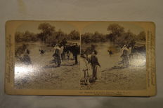 stereoscopic photography - Batch of 45 stereo photos  19th and 20th century