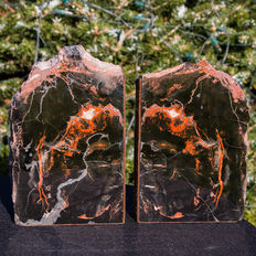 Petrified wood with agate bookends - 18 x 11 x 4 cm - 4103gm (2)