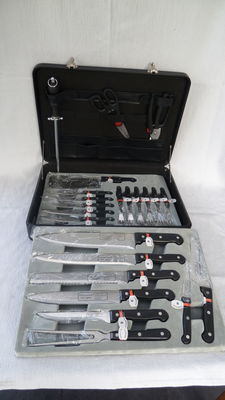 Deluxe knife set Solingen Rosenbaum in a case, 24 piece incl. for 6 pers. steak cutlery