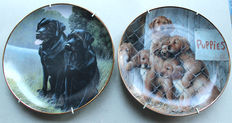 Franklin Mint - 2 porcelain plates with dog motifs - Labrador and Golden Retrievers