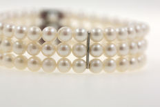 Three strand Akoya pearl bracelet 5.5 mm and white gold clasp with rubies - 19 cm