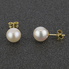 Yellow gold, 18 kt – Earrings – Akoya pearls of 8.00 mm