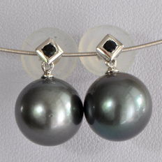 Gold earrings with Tahitian pearls – 10.2 to 10.4 mm – 14 kt white gold