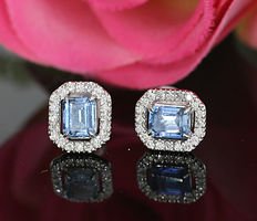 A pair of fine aquamarine brilliant ear studs in 750 white gold -- no reserve --