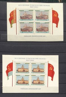 Soviet Union - Collection blocks and stamps in 2 stock books