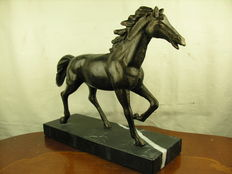 Sculpture bronze - horse / stallion on marble base - 2nd half of the 20th Century or older