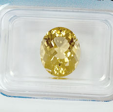 Heliodoor - 3,66 ct