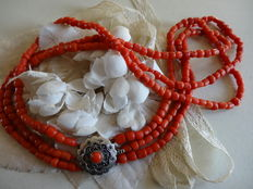 Red coral necklace with silver clasp