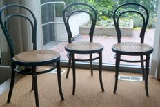 Thonet - 8 Dining chairs