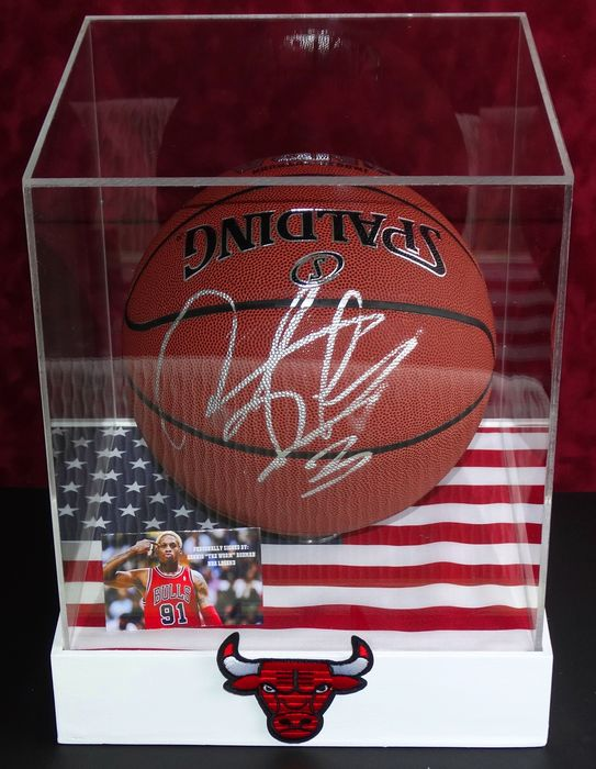 san francisco d8f75 3a846 Dennis Rodman Full size Autographed Basketball in Display Case +  Certificate of Authenticity from PSA - Catawiki