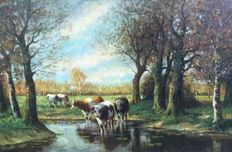 Unknown (around 1900) - Cows at and in the water