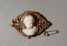 Brooch in gold set with a cameo depicting a cherub, with security chain.