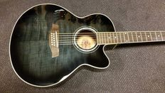 New Richwood 12-string electro-acoustic handmade guitar, limited edition, beautiful striped tigerstripe