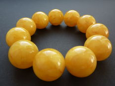 Baltic Amber bracelet, egg yolk colour, 49,02 g