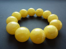 Baltic Amber bracelet, egg yolk/ white butter color