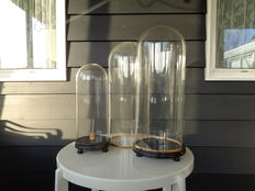 Three glass cloches, two with wooden base