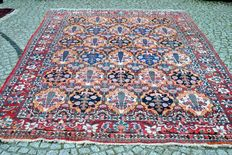 Beautiful Persian rug from Bakhtiari Iran, knotted by hand 316x212cm around 1950