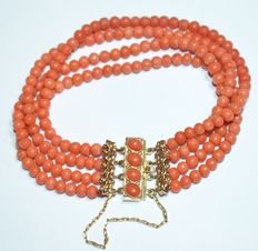 Bracelet with four strands of precious coral, with yellow gold clasp.