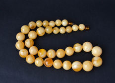 Baltic amber necklace, egg yolk color, 81 gram
