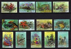 Theme Flora and Fauna – design collection with series and blocks.