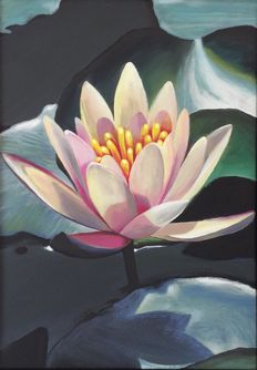 Alberto Silva - Waterlily