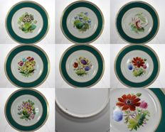 Collection of seven Antique Porcelain Plates - Hand Painted Botanical Patterns