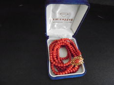 Red coral necklace with gold clasp