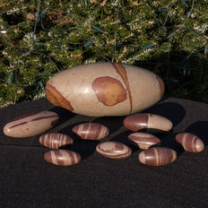 Fine collection of Shiva Lingam - 5 tot 21cm - 3,27kg  (10)