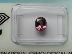 Spinel - Pink - 1,37 ct.