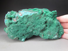 Malachite over chrysocolla - 13 x 7,2 x 4cm - 450gm