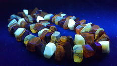 100% natural Baltic amber facet cut necklace