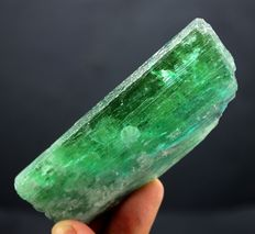 Lush Green Color Hiddenite Kunzite Crystal Specimen - Afghanistan - 93 x 38 x 13 mm - 110gm