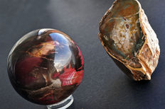 Petrified Wood freeform and sphere - 8,4cm and 826gm - 8,1 x 7 x 5,6 and 392gm  (2)