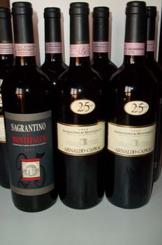 Wonderful set of 7 bottles of 1995-2001 Sagrantino Montefalco A. Caprai