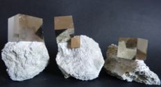 Collection of pyrite cubes on matrix - Spain - 9.5 x 6, 9.5 x 7.5 and 9.5 x 9.5 cm - 1.289 kg (3)