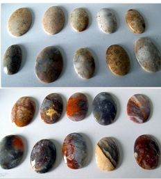 Collection of fossil Coral and Jasper cabochons - 30 to 50 mm (20)