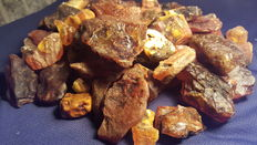 Raw Baltic Amber material