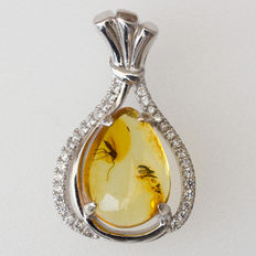 Lovely Sterling Silver And Baltic Amber Pendant With Fossil Insect