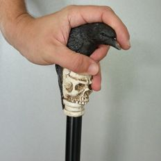 Cane - Game of Thrones - raven mounted on a skull
