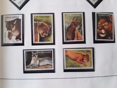 Republik Suriname 1989/1999 - Collection in album with a lot of thematic stamps