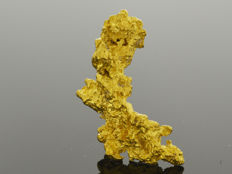 Gold nugget natural - 24 x 13 x 7 mm -  25.43 ct