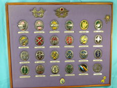 Germany - Rare and Unique Complet Set of Insignia, and colors, of the German Army - Bundeswher - in a frame