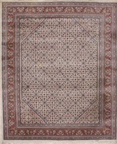 Hand-knotted oriental carpet – India, Herati – 2.50 x 3.00 m – India