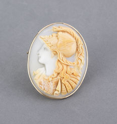 Cameo brooch, from the late 19th century, with yellow gold frame.