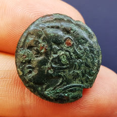 Greek Antiquity - Sicily: Syracuse Mint – Pyrrhus, 278-275 BC - AE Great Bronze Unit - (8,97 gr., 23 mm.)