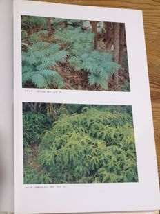 Satoru Kurata & Toshiyuki Nakaike - Illustrations of Pteridophytes of Japan - 2 volumes in slipcases - 1979/1981