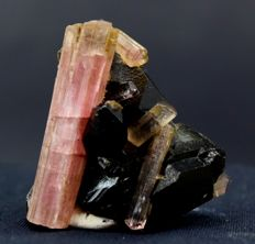 Terminated & Undamaged Pink Tourmaline Cluster with Smoky Quartz Specimen - 35*38*17 mm - 30 gr