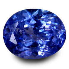 Tanzanite 0.48 Carat - No reserve prive